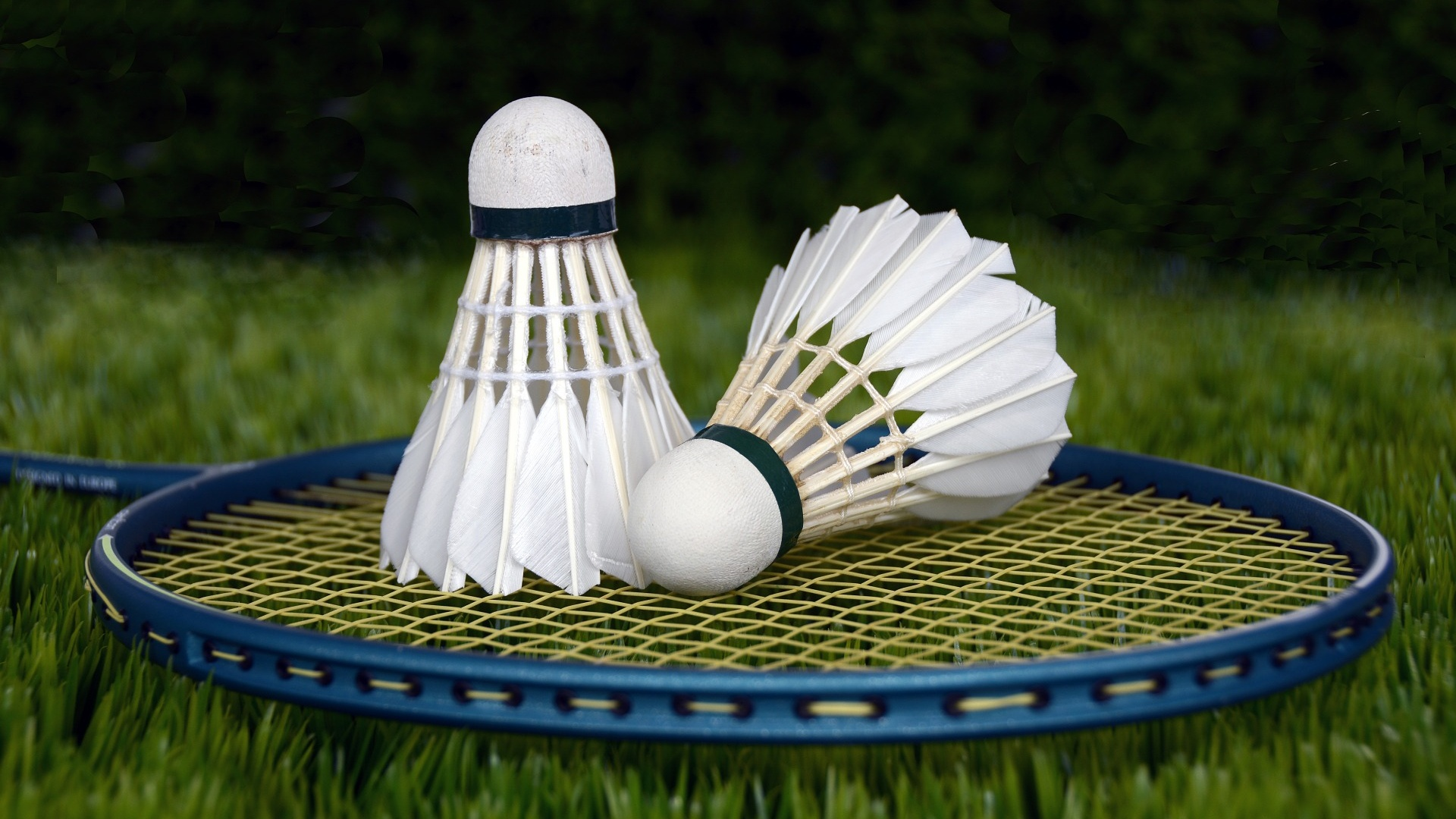 badminton-1428047_1920-cropped